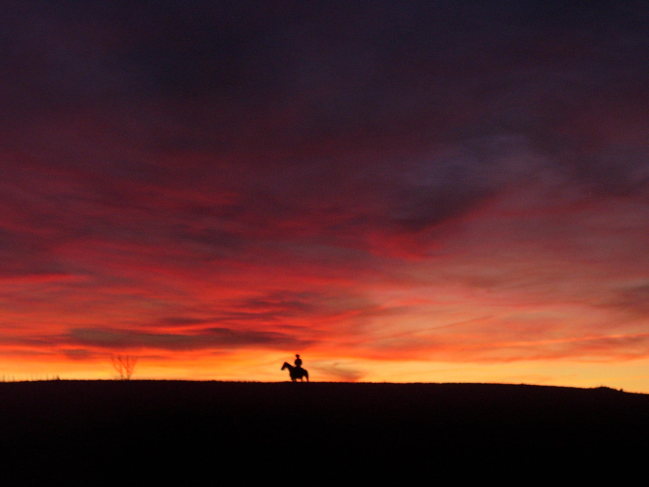 cowboy-silhouette-jpg