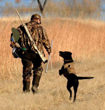 crop man & dog